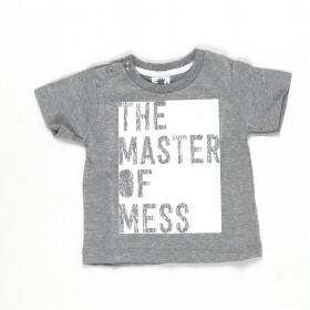Camiseta Master Of Mess