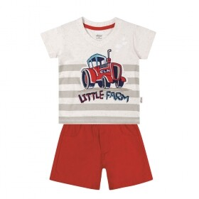 Conjunto Little Farm