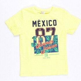 Camiseta Mexico Summer Session - Costão