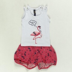 Conjunto Flamingo Whats Up